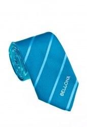 Firmaya Özel Logolu Kravat 09